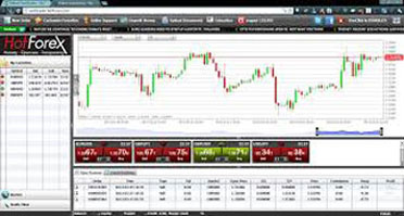 Hotforex currenex or premium account # 000046535